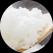 ricehibari